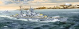 German Heavy Cruiser Blucher